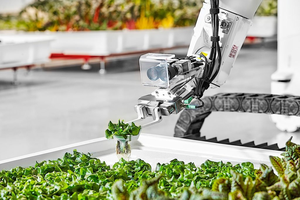 The Future Indoor Agriculture Fusion By Iron Ox Robots & AI