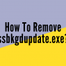 How To Remove ssbkgdupdate.exe?