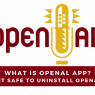 What Is OpenAL App? Is It Safe To Uninstall OpenAL?